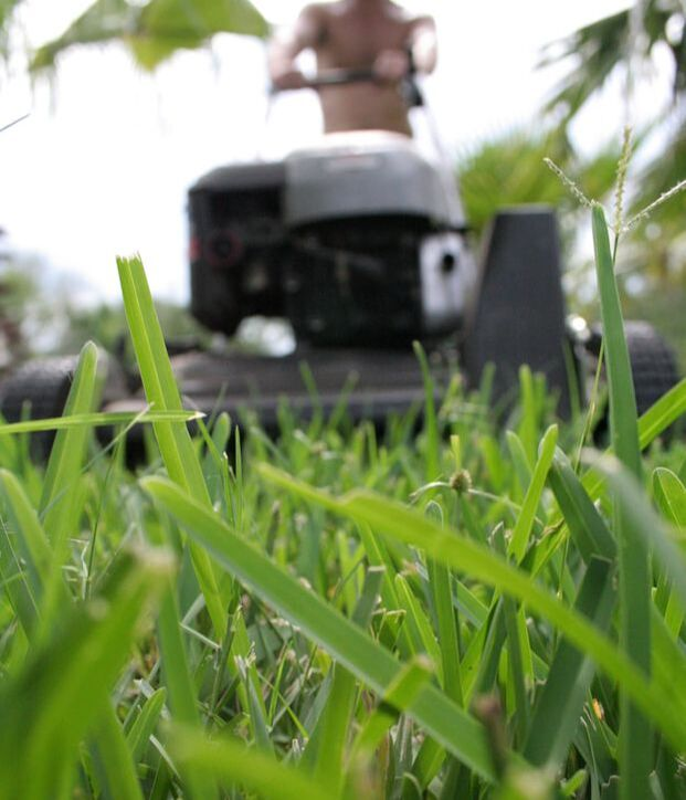 A view from in front of a lawn mower with a man pushing the mower. The grass is detailed with spots of water detailing the picture.