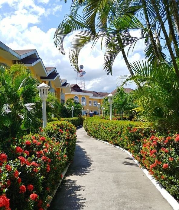 Bright orange apartments face one another with a large sidewalk centering them. There are bushes on either side that are blooming bright red flowers, Palm trees are on both sides of the sidewalk that are old and tall. Its a sunny picture with white edging outlining the sidewalk.