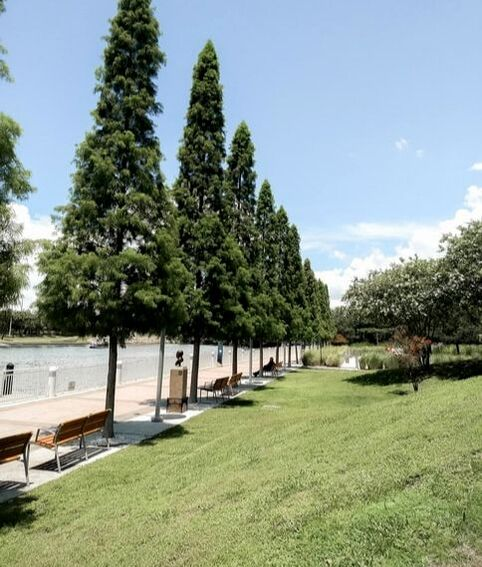 a landscape picture of the side of a lake, there are benches along the water with tall trees giving shade. The grass is groomed to perfection.